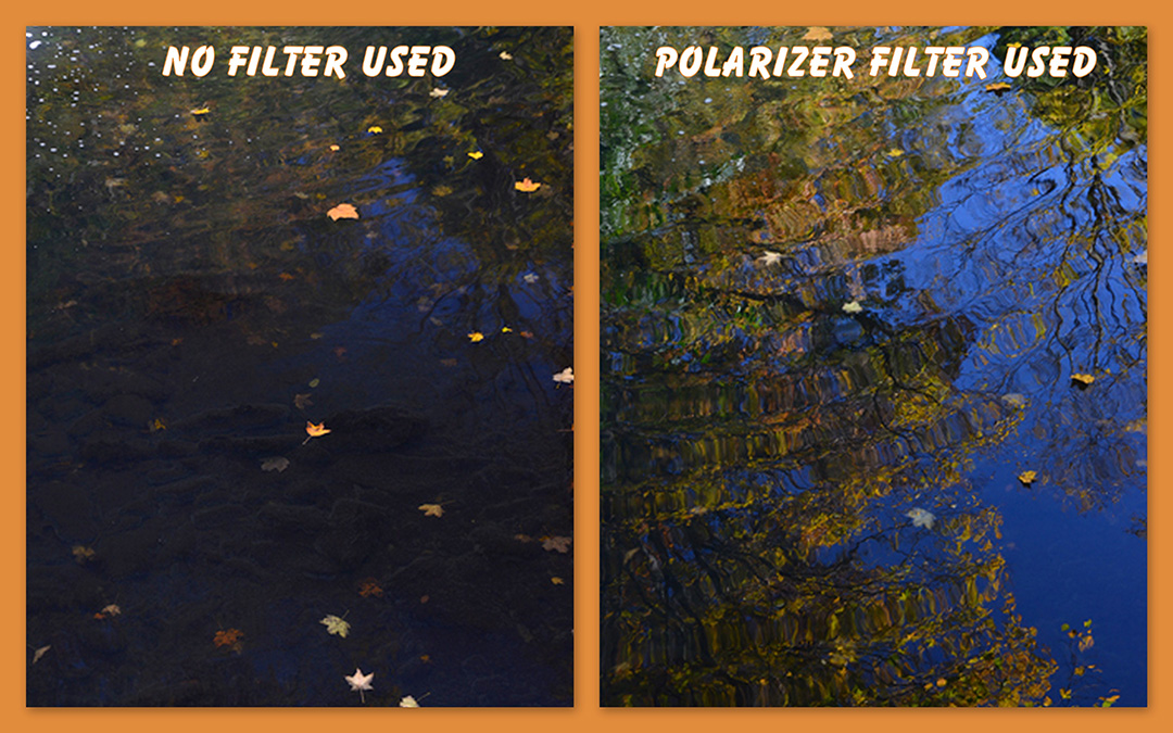 What is a Circular Polarizer Filter? Why Do I Need One?